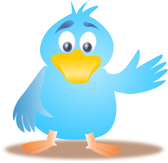 How does Twitter work? Brilliant Free Tips to enhance your Business